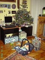 Gyermek a fa alatt