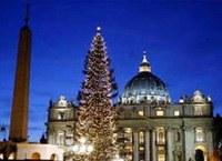 Átadták a Vatikán karácsonyfáját