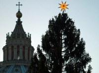 Játékok és fapadok lesznek a vatikáni karácsonyfából