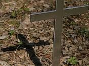 Meghalt Afrika egyik vezető evangéliumi teológusa