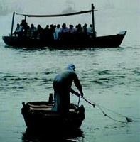 A halász és a piackutató szakember