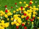 Mit ünnepeltek a kereszténység előtt húsvétkor Európában?